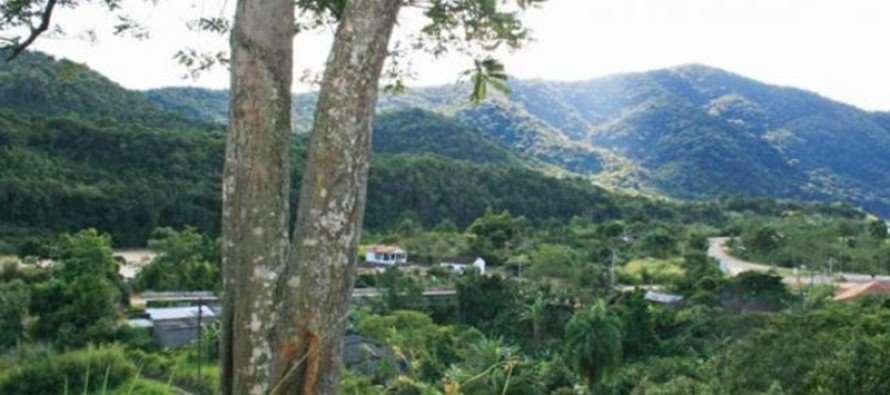Incra/SP obtém usucapião de área particular do Quilombo André Lopes