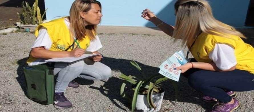 (23/05) Governo Carlos Grana realiza mutirão contra a dengue neste sábado