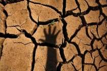 Crise hídrica:  Medidas tardias e insuficientes para solucionar crise
